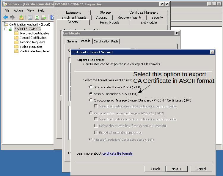 06-ca_export_ascii_mode.png