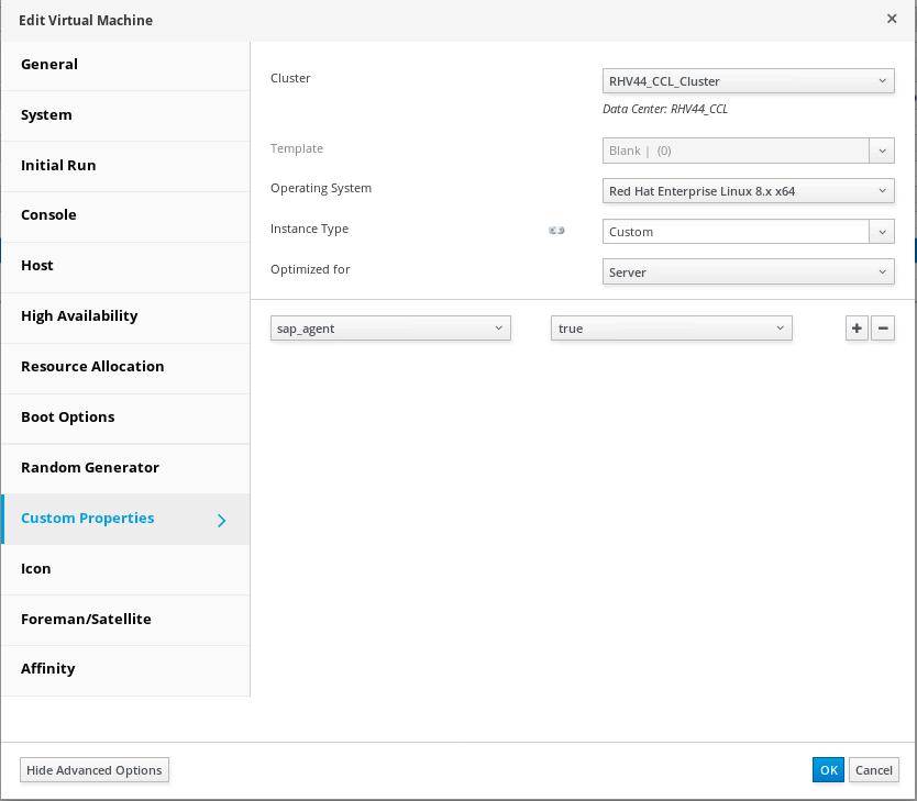 Screenshot from RHV showing the Custom Properties Settings