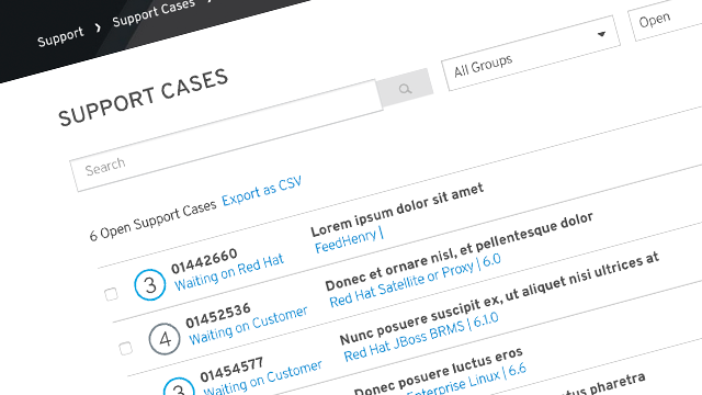 Portal Case Management screenshot