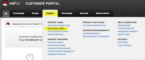 support_view_cases.png