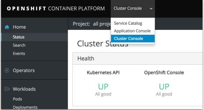 cluster console