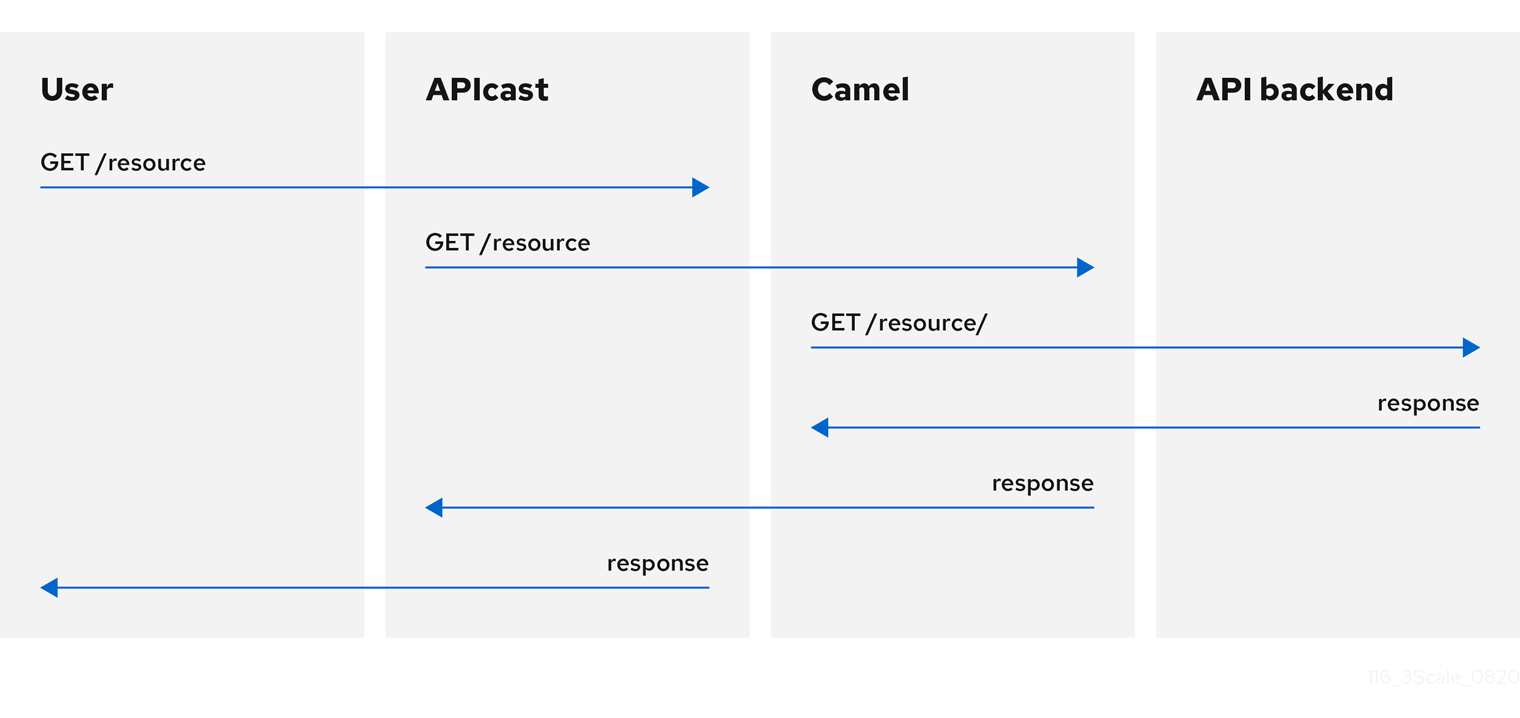 Camel Service policy request flow