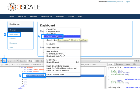 Developer portal modify built-in pages CSS