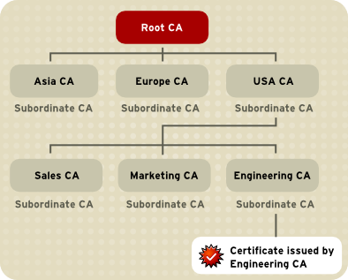 Example of a Hierarchy of Certificate Authorities