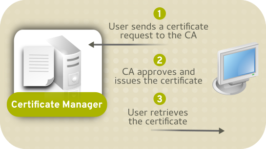 CA Only Certificate System