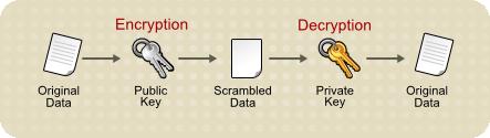 公開鍵の暗号化