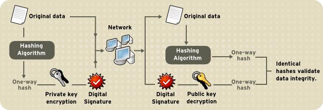 デジタル署名を使用したデータの整合性の検証