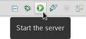 start the server crs