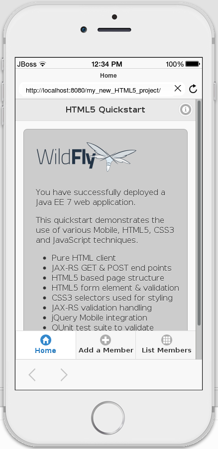 HTML5 Web Application Viewed with BrowserSim.