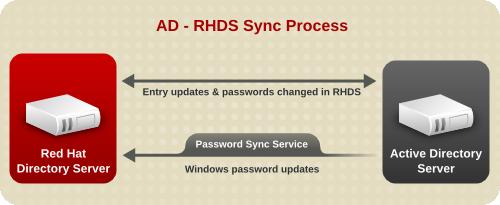 The Sync Process