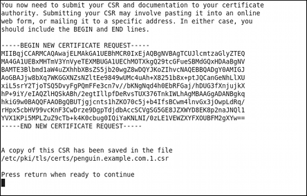 Instructions on how to send a certificate request