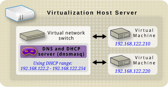 Virtual network switch running dnsmasq