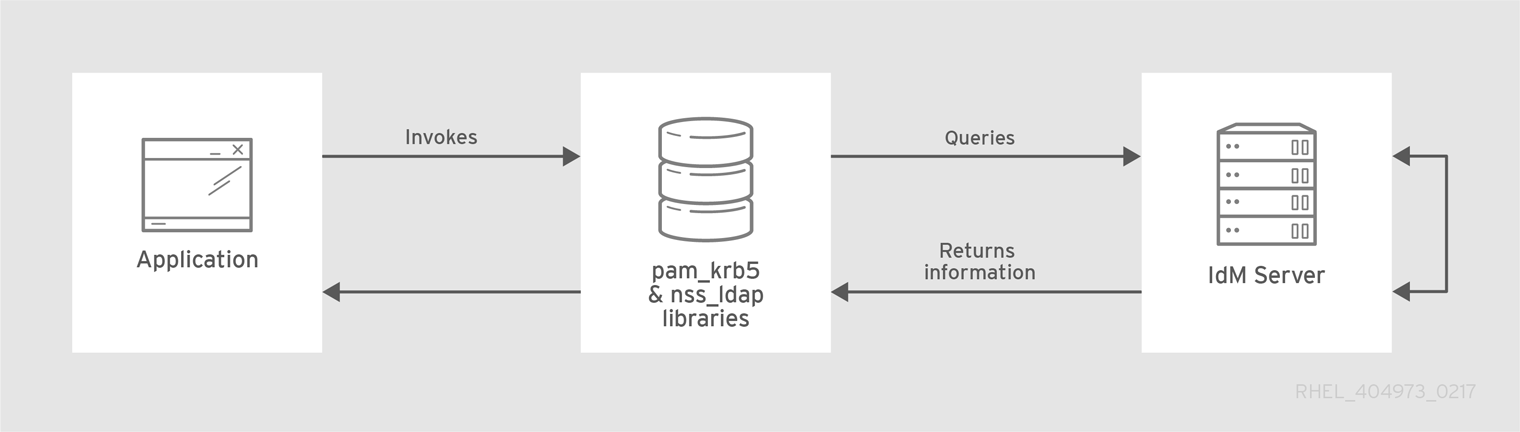 LDAP と Kerberos を使用したクライアントと IdM