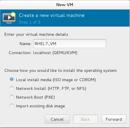 命名虚拟机和选定安装方式