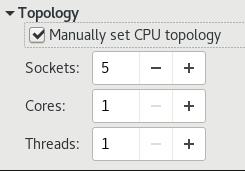 CPU トポロジーのオプション