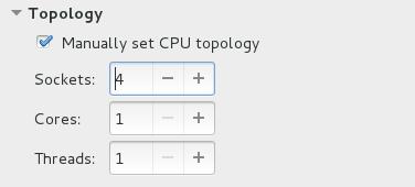 CPU 拓扑选项