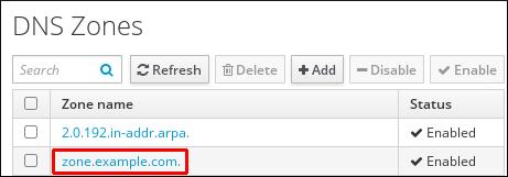 屏幕截图突出显示 DNS 区域在 DNS 区域页面左侧显示的条目