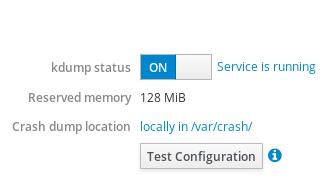 web console test kdump config