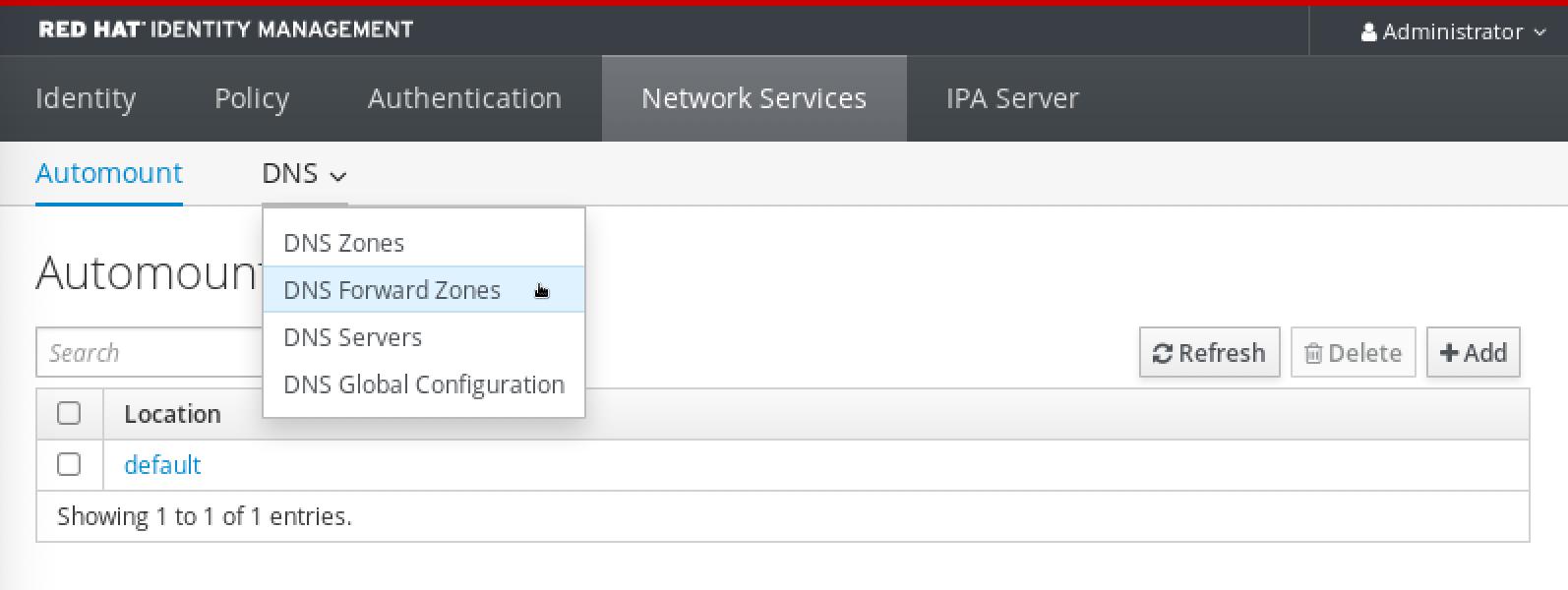 Selecting DNS Forward Zones from the DNS menu