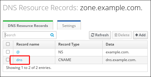 """A screenshot of the """"DNS Resource Records"""" page displaying information for the zone.example.com zone. The entry for the """"dns"""" record name is highlighted."""