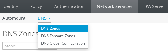 A screenshot showing that a user has navigated to the Network Services tab and has selected DNS Zones from the DNS submenu.