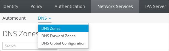 ユーザーが Network Services タブに移動し、DNS サブメニューから DNS ゾーンを選択していることを示すスクリーンショット。