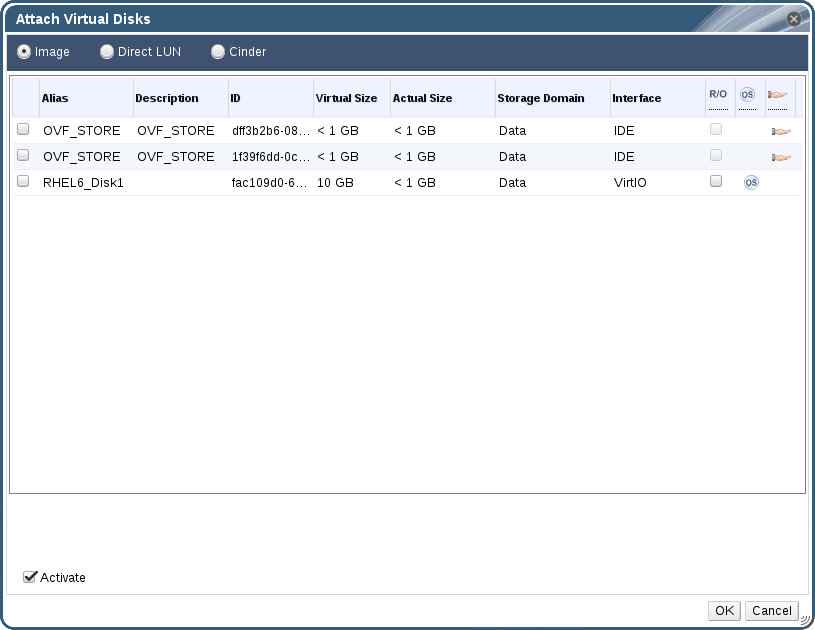 The Attach Virtual Disks Window