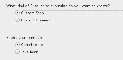 IgniteExtWiz step