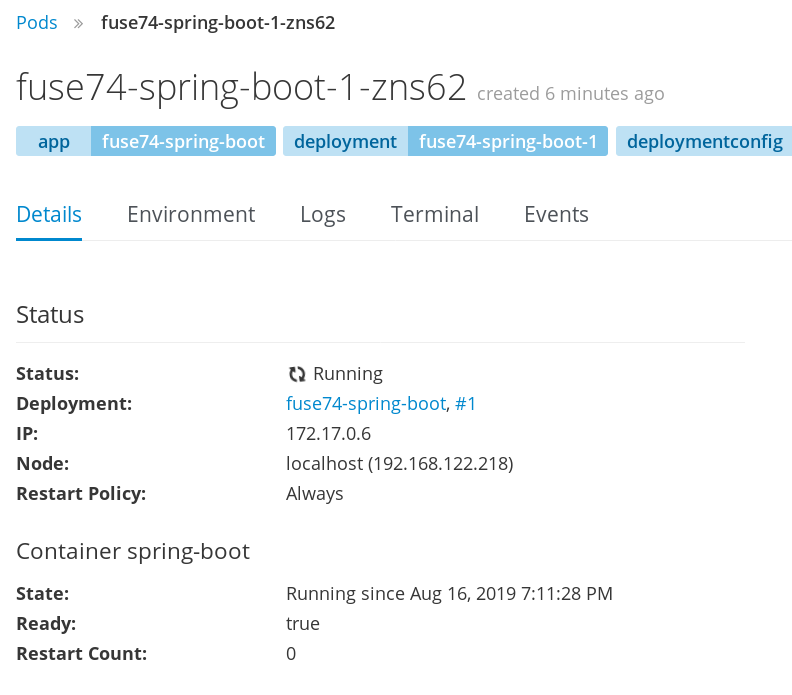 Detail view of the running pod for fuse74-spring-boot