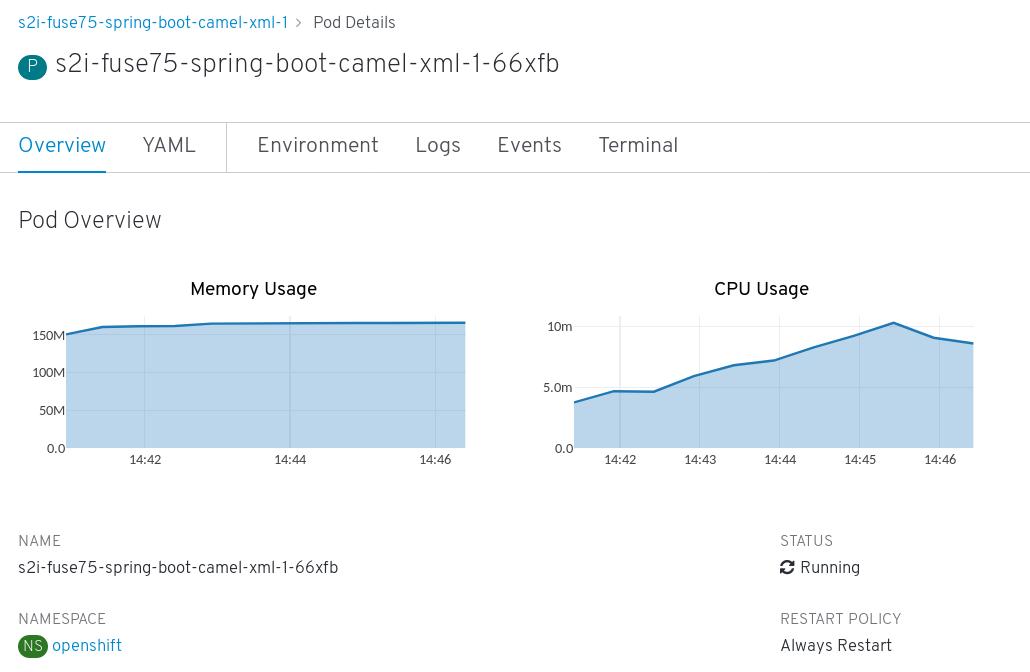 Spring Boot Camel XML pod details