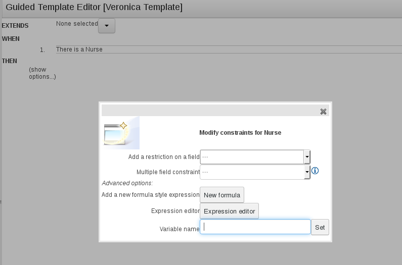 The Modify Constrain dialog window for BRMS User Guide 6.0.2