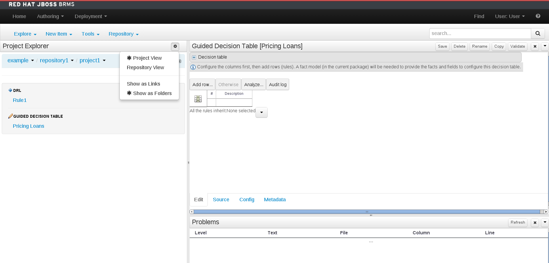 A screenshot of the BRMS Project Explorer
