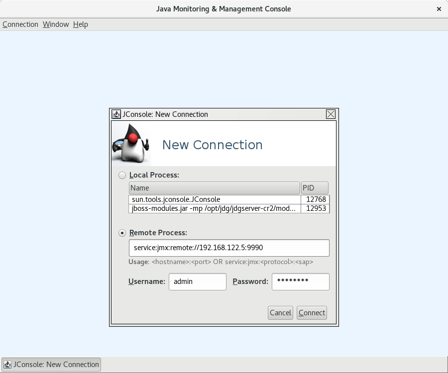 JConsole connecting to remote Data Grid server