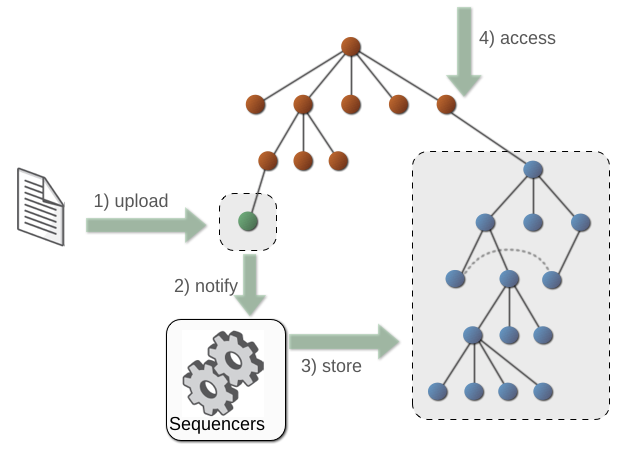 Sequencing Workflow