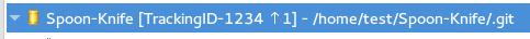Git Repository Status