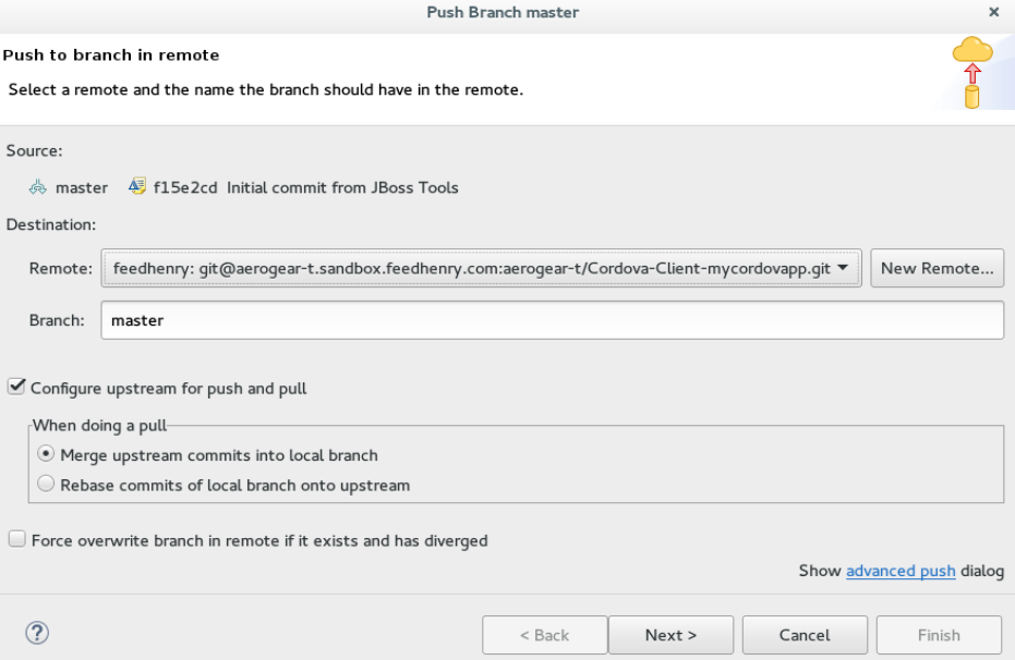 Details of the Push Added in the Push Branch master Window