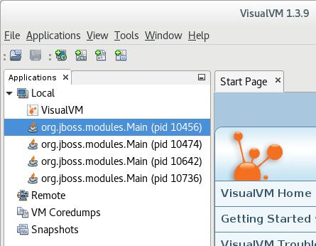 visualvm local domain
