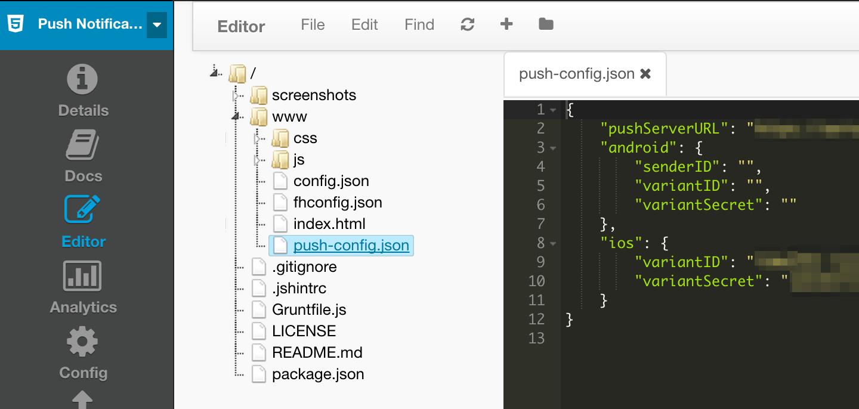 push-config.json