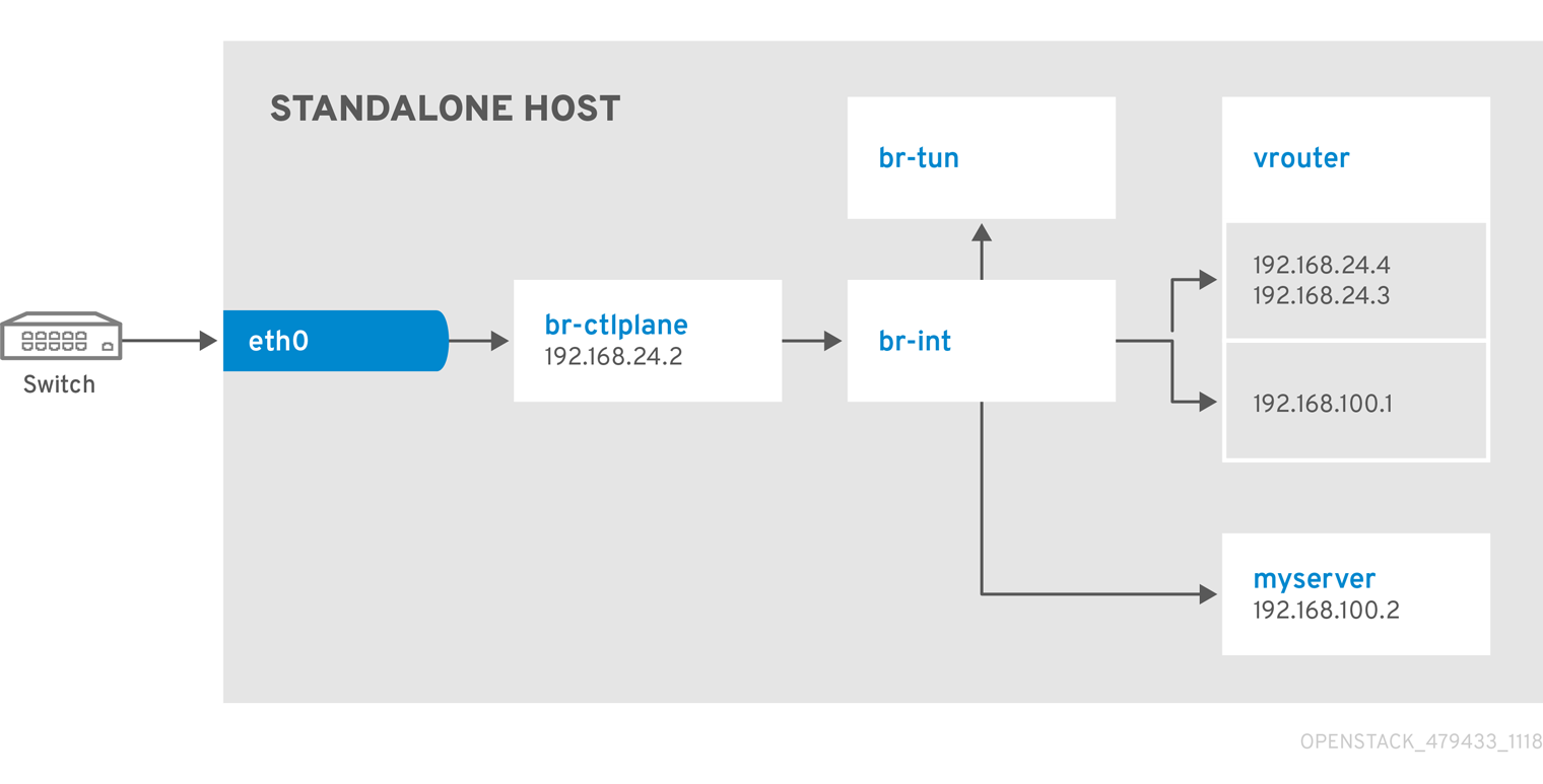 Standalone1NIC Tenant Provider