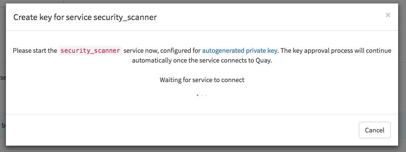 Run security scanner