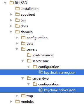 domain json config