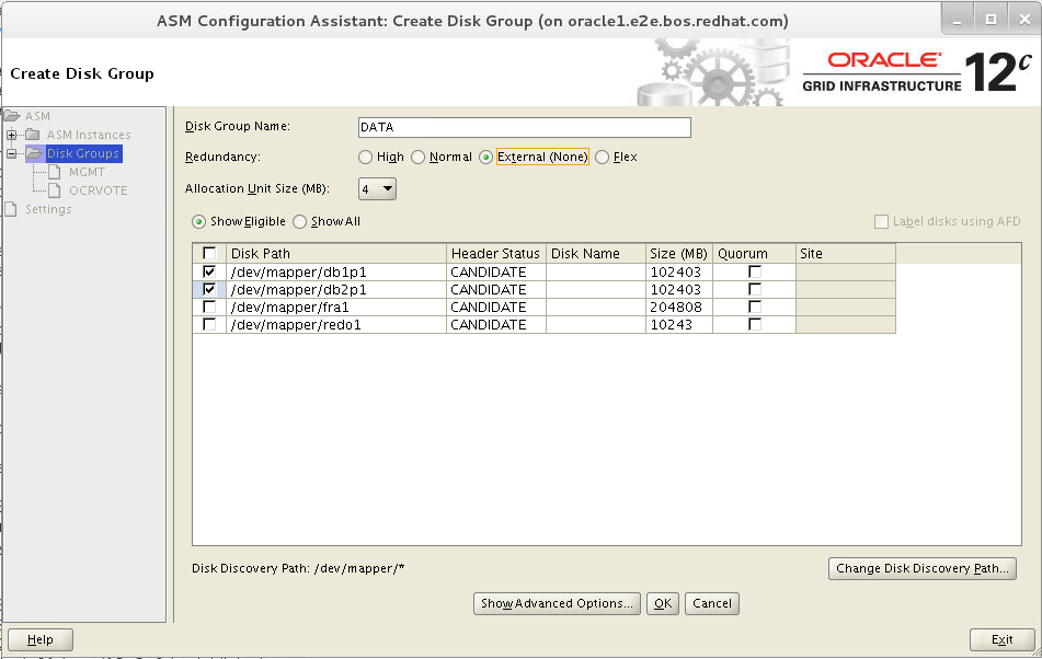 Deploying Oracle RAC Database 12c Release 2 on Red Hat Enterprise